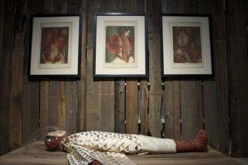 Exhibición de Archivo Genético Humano Perdido