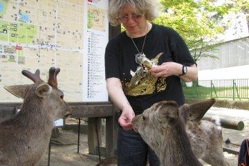 Животные в Японских городах