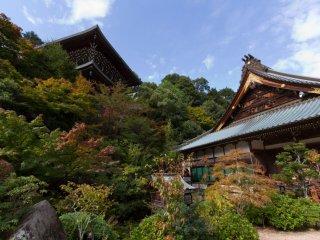 Bức ảnh chụp từ góc rộng đem đến cho bạn cái nhìn toàn cảnh về các tòa nhà trong chùa