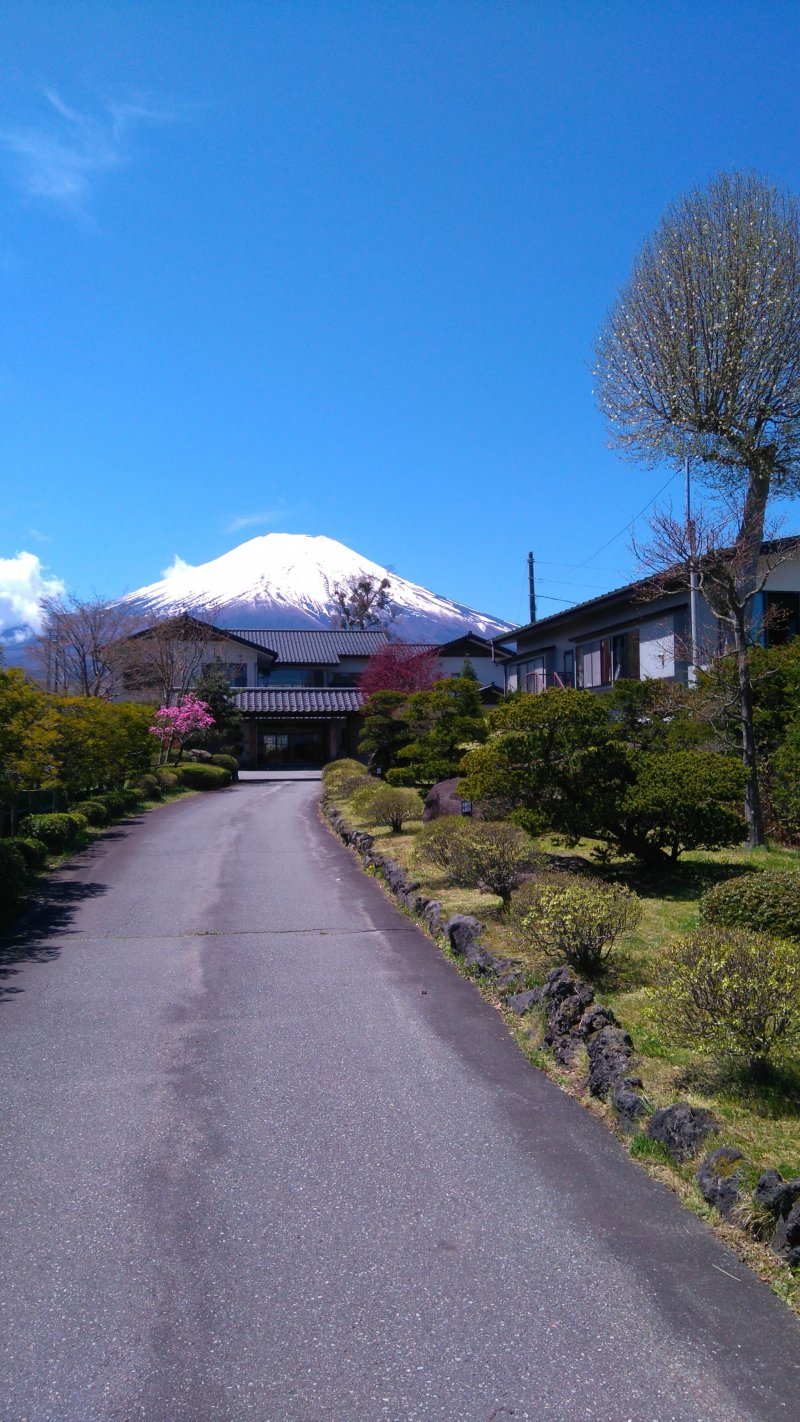 how to travel solo in japan