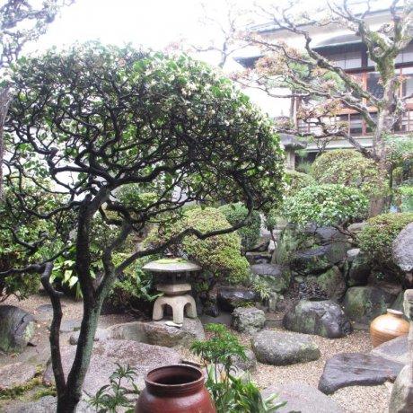 Gose's Sougetsusai Festival