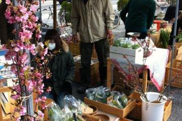 Pasar Petani Organik Nara
