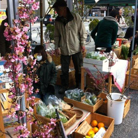Nara's Organic Farmers Market