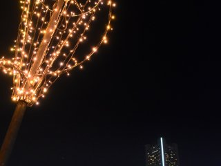 ランドマークタワーを背景に美しく灯る汽車道プロムナードの街灯