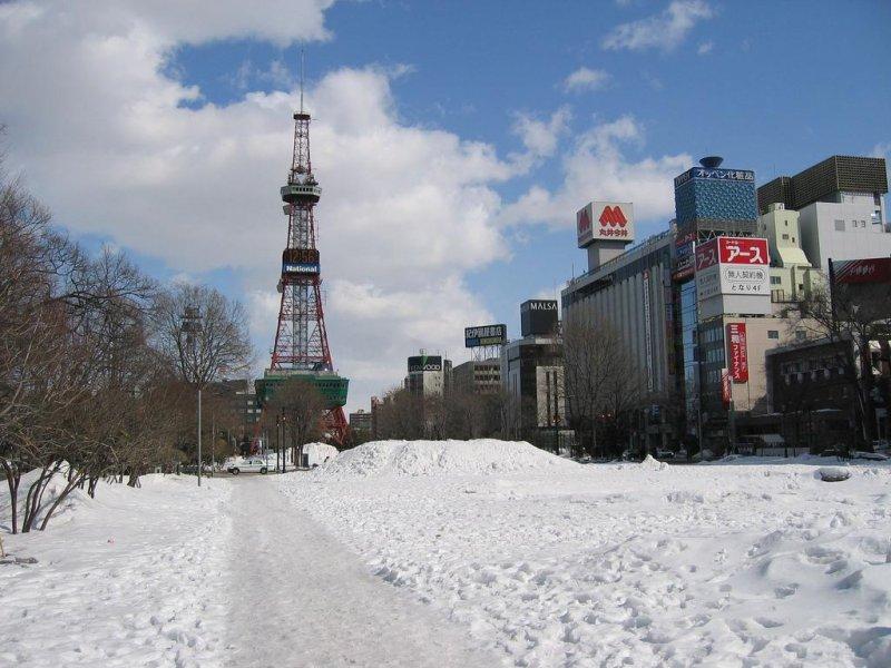 冬季末公園被白雪覆蓋的模樣。