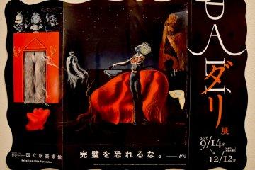 Salvador Dali Exhibit at the NACT