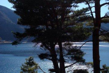 Lake Saiko, just west of Lake Kawaguchiko