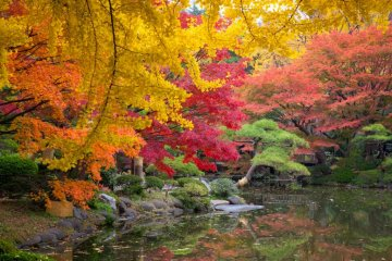 Hibiya Park in Autumn