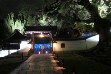 แสงสีแห่งฤดูใบไม้ร่วง ณ.เกียวโต