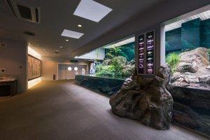 The first exhibit upon entering Kinosaki Marine World