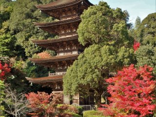This pagoda is ranked as one of Japan's 'Top 3', along with those in Nara's Horyuji Temple & Kyoto's Daigoji Temple.