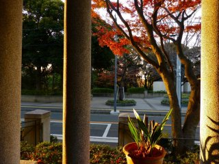 The view of Motomachi Koen Park from Yamate 234