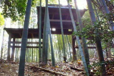 Đến chùa Ishite qua con đường trong rừng tre