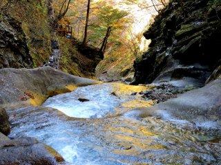 Những chiếc lá vàng phản chiếu một màu vàng vào vũng nước của thác nước này