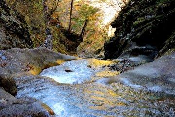 Желтые листья создают золотой отблеск на ступенчатом бассейне водопада