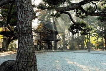 Erinji Temple in Autumn