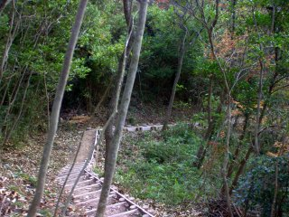 The side trail up to the castle ruins is more narrow and quite a bit steeper