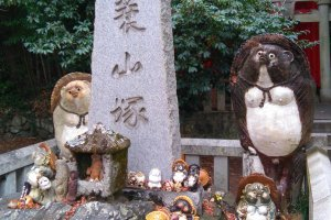 Tanuki (raccoon dogs) at Yashimaji