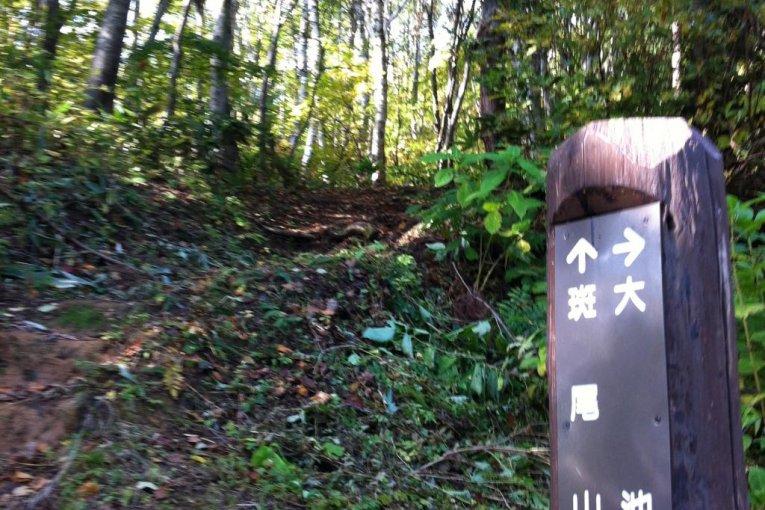 Shinetsu Trail, Part 1