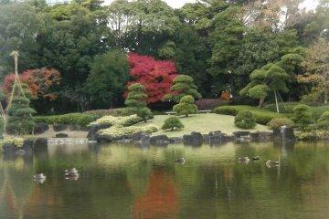 Mihama-en Japanese Garden