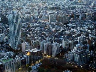東京の都会的な風景