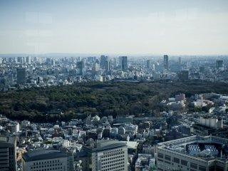 Yoyogi Park and Meiji Jingu from the South Observatory