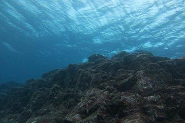 ใต้ท้องทะเล ระดับความลึก 5-6 เมตร