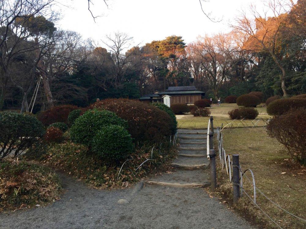 A tranquil walk