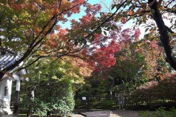 Hokongo-in Temple in Kyoto
