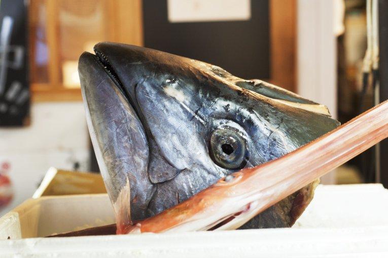 ตลาดปลาซึตคิจิในโตเกียว