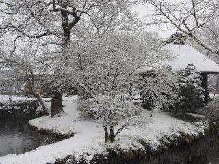 Il a commencé à neiger pendant notre visite à Oshino Hakkai.