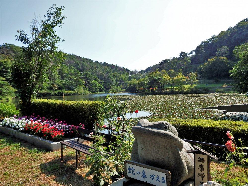 Pemandangan di sekitar danau utama pada musim panas