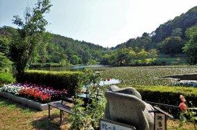 Kebun Janohana Fukushima