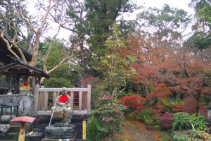 At Kōzan-ji