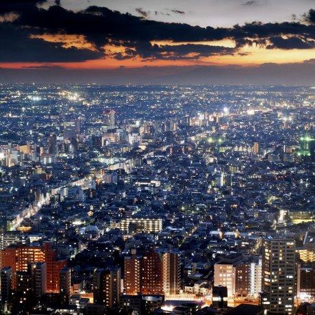 도쿄에서 무료로 볼 수 있는 4가지 볼거리