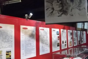 <p>And more of the displays</p>