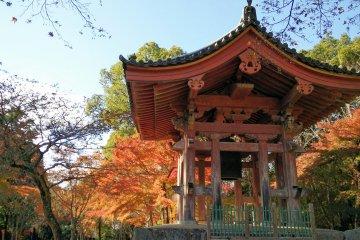 ใบไม้เปลี่ยนสีที่วัดไดโกะจิ เกียวโต