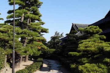 A stone path leading to the park's venerable wooden mansion
