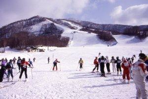Bermain ski di salju