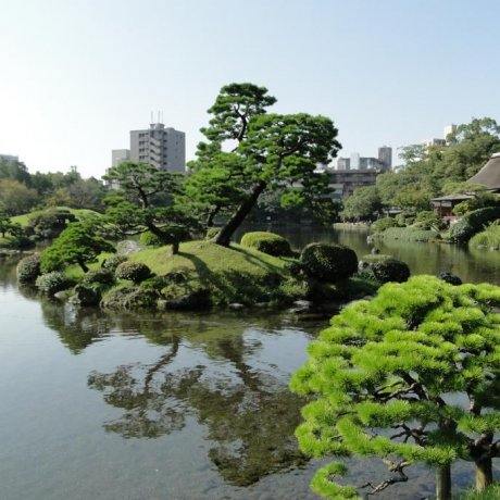 Kumamoto's Suizen-ji Garden