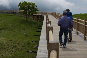 The safe elevated boardwalk that leads up to Lake Number 1