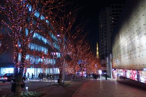 Reserve a car in the evening to see Tokyo's bright lights