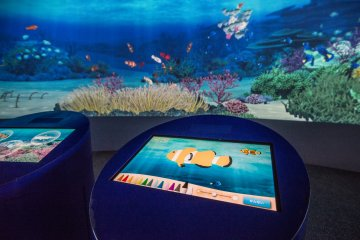 This display allows guests to color their own fish and send it swimming to the large screen in the background