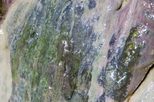 Watch for glistening mineral deposits