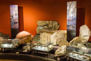 Learn about the different kinds of rocks in the History of the Earth section