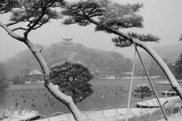 สวน Sankei-en แห่งโยโกฮาม่า ท่ามกลางหิมะ