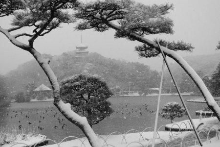 Khu vườn Sankei ở Yokohama trong tuyết