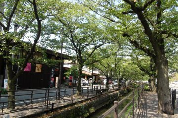 Canal at Isawa Onsen. It looks so beautiful when the trees are in bloom, but sadly I lost my own photos.