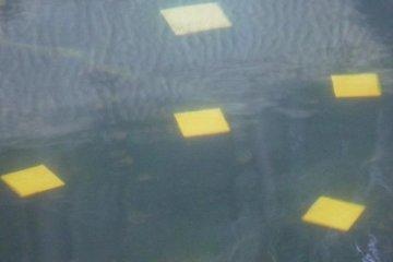 <p>กระเบื้องปะด้วยทองแท้ข้างใต้น้ำอุ่น</p>