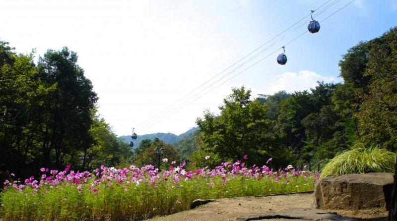 <p>Shin-Kobe Ropeway</p>